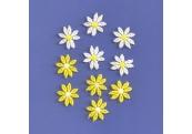 """10 Piece- 1""""  Venice Daffodil Appliques 160"""