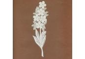 White Floral Rayon Venice Applique    186