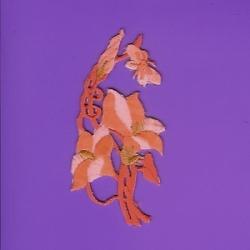 Peachy Orange/Gold Iron/Sew On Applique  337