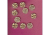 "10 - 3/4""  Diameter Gold/Frost Shank Buttons   1527"