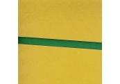 "9 Yds 1/4""  Green Poly Ribbon   1732"