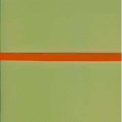 "5 Yds  1/4""  Neon Orange Poly Ribbon  1741"